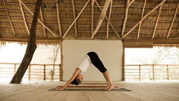 Resident Yoga Teachers