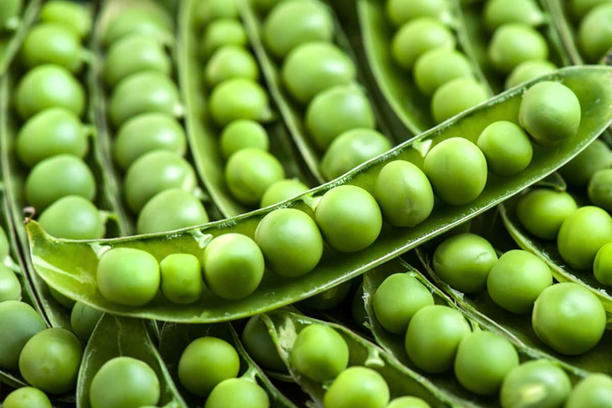 Peas: The Unlikely Superfood