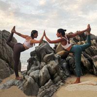 Alchemy of Joy: The Subtlety of Transformation