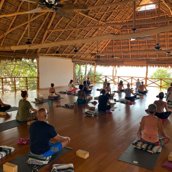 Sweat- The evening yoga will vary from a workshop-style practice class, a fluidly moving chill flow class, a  yin class, or yoga nidra