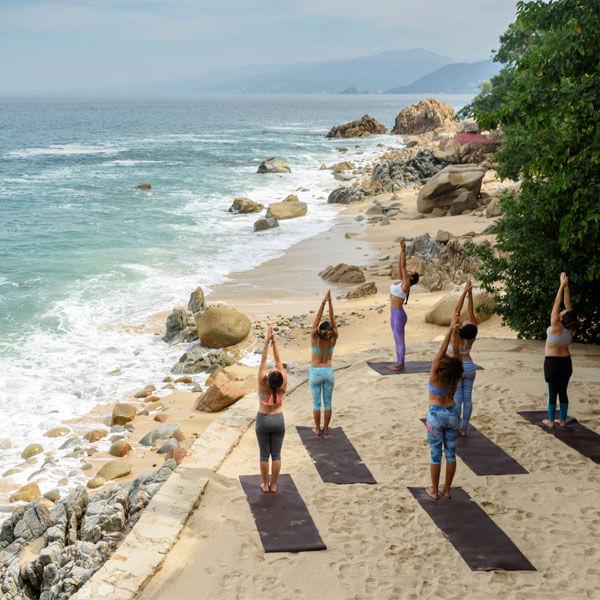 Yin/Aerial/Restorative Yoga