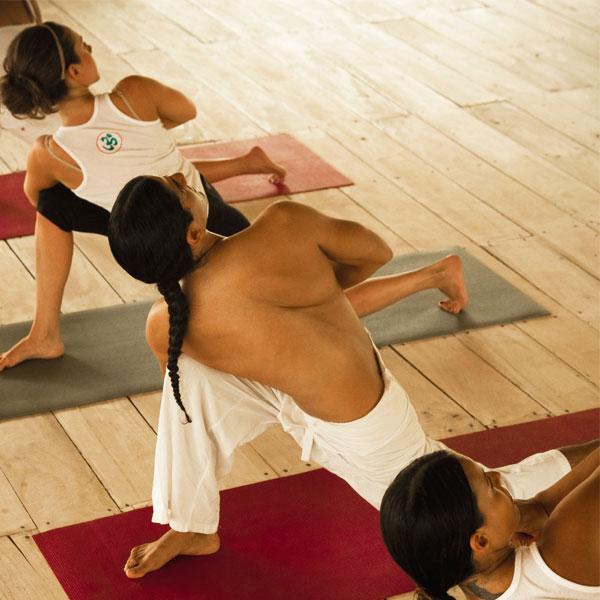 Yoga or Qigong Session