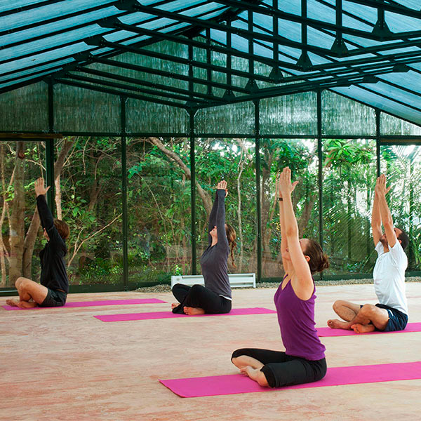 Afternoon Yoga Workshop