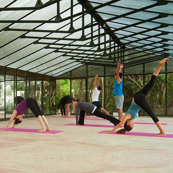 Tantric Hatha Yoga Practice with Nikki